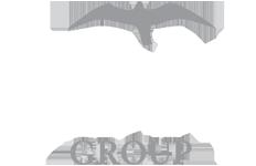 LDM Group